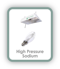High Pressure Sodium (HPS) Comparison Button