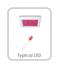 Typical LED Grow Light Comparison Button