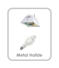 Metal Halide Comparison Button