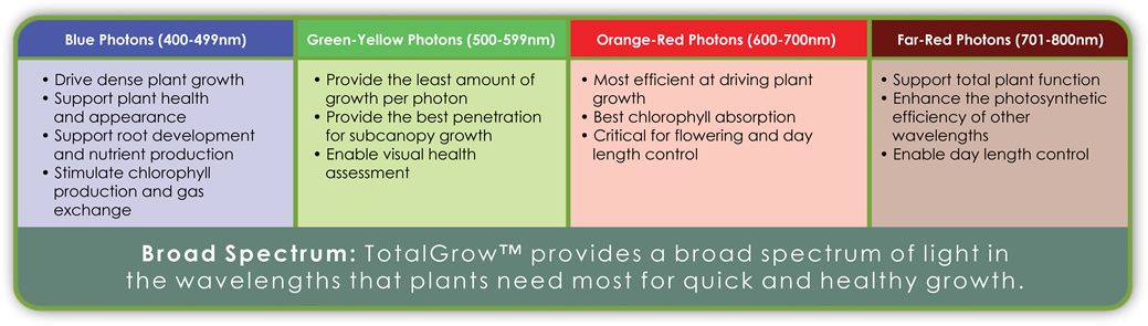 Summary of the Impacts of Photons of Various Wavelengths/Colors on Plants