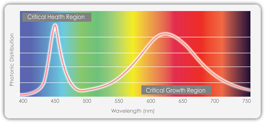 Photonic Distribution Plot for TotalGrow's Broad Grow Spectrum