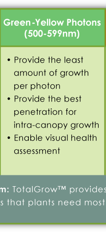 Impact of Green Photons on Plants