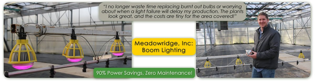 Meadowridge Testing of TotalGrow Night & Day Management Photoperiodic LED Lighting on Booms for Flowering Control